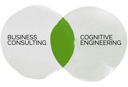 Schema Business Consulting and Cognitive Engineering